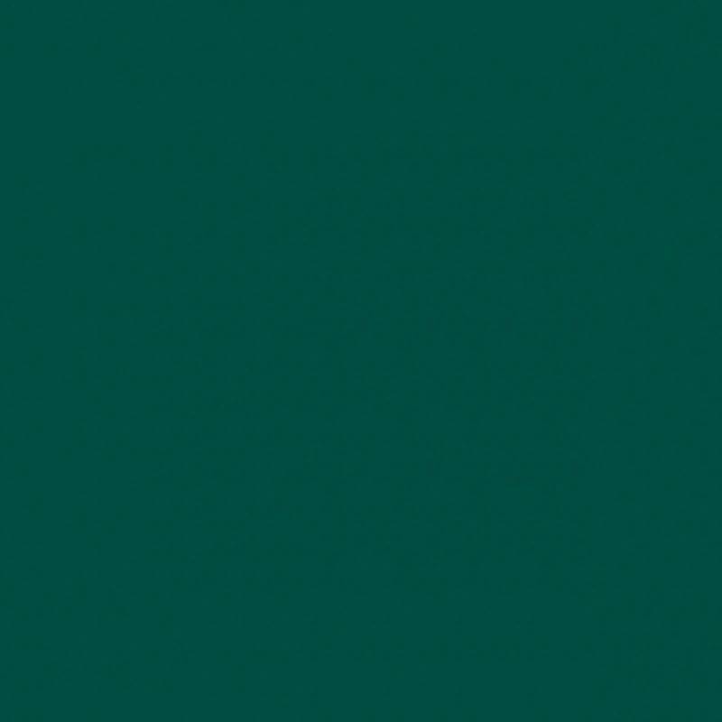 Спортивные напольные покрытия OMNISPORTS R35 - FOREST GREEN