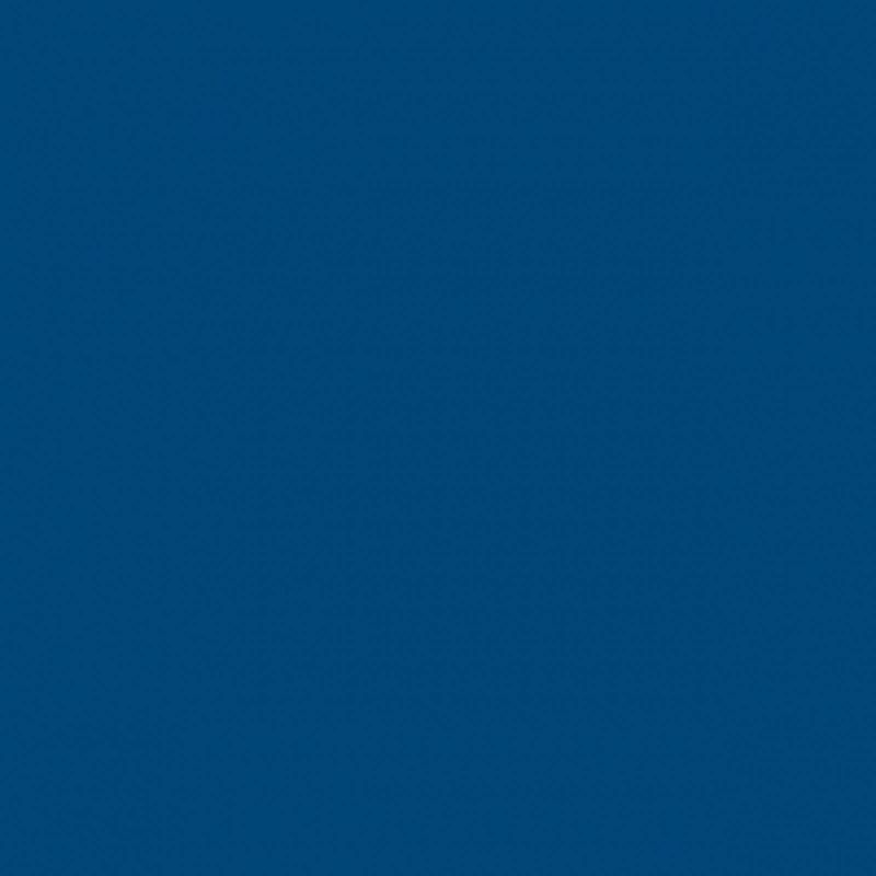 Спортивные напольные покрытия OMNISPORTS R35 - ROYAL BLUE