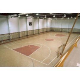 Спортивный натуральный линолеум.83213